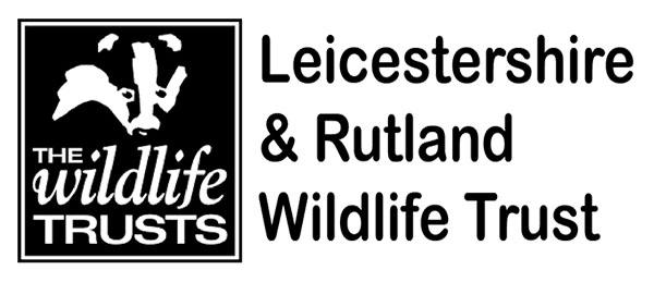 WT small logo